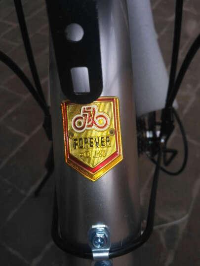 永久自行车 20寸7速高碳钢弓背车架 时尚休闲折叠车  黑蓝色 晒单图