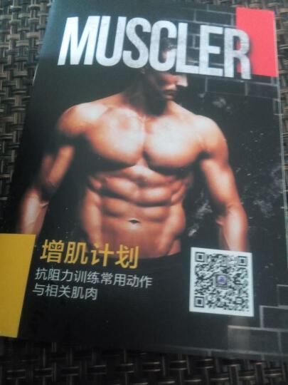 康比特(CPT) 康比特增肌粉健身增重 健肌粉二代 肌刻乳清900g+康比特肌酸300g 晒单图