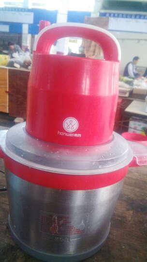 韩伟(HANWEI) 韩伟LG-SY6S绞肉机家用商用大容量6L不锈钢电动碎肉机碎菜搅拌机 不锈钢杯 晒单图