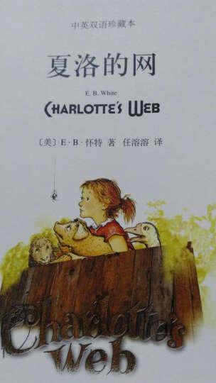 夏洛的网-中英双语珍藏本 晒单图