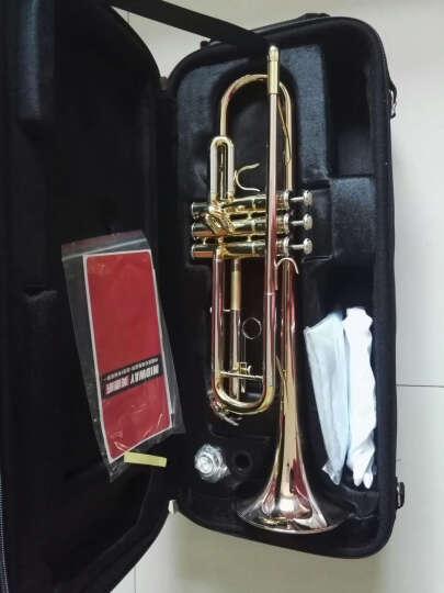 美德威MIDWAY小号乐器 降B调小号 专业演奏考级进阶小号铜管乐器MTR-H5 【升级版三色】MTR-H5 晒单图