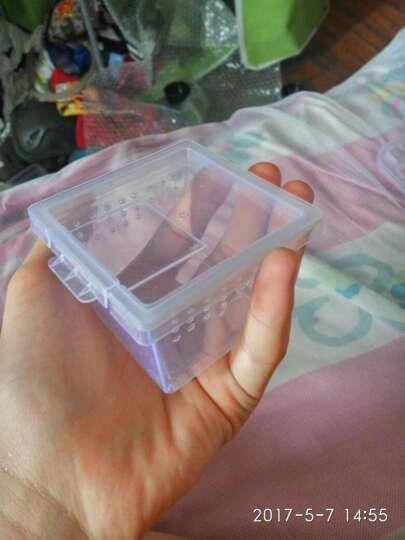 爬宠饲养盒蜘蛛蜥蜴蝎子青蛙蜗牛亚克力无味饲养盒 H1+水盆 晒单图