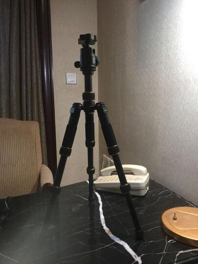 轻装时代迷你三脚架轻便携短小相机桌面微距三角架佳能微单反摄影手机直播自拍杆支架 Q166C麟纹碳纤 晒单图