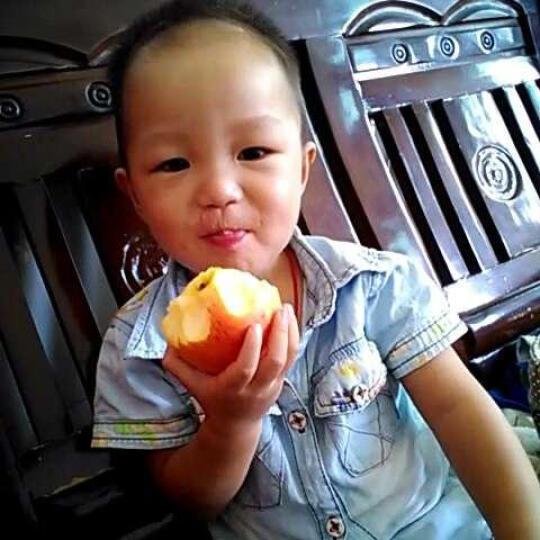 【凤翔馆】新鲜红富士苹果 凤翔苹果 现摘现发 陕西特产 水果精装礼盒 晒单图