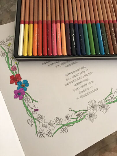 奇幻梦境 成人减压手绘涂色书  秘密花园续集手绘涂色填色书 涂鸦涂绘填色本 绘画入门书籍 晒单图