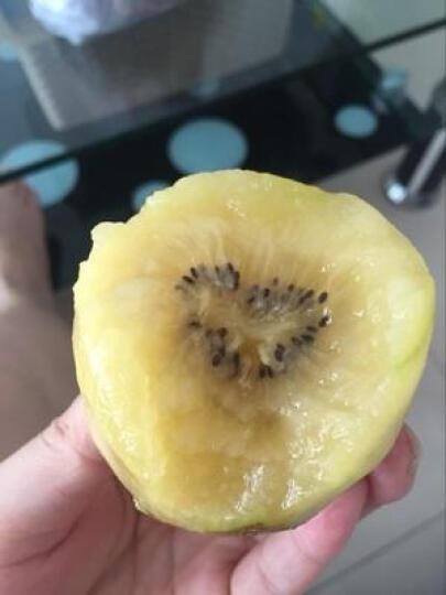 树懒果园 新西兰进口佳沛阳光金奇异果 10个 单果110-140g 猕猴桃 晒单图