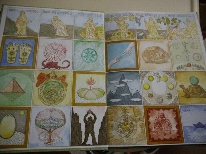 生命之树:达尔文的一生(启发童书馆出品) 晒单图