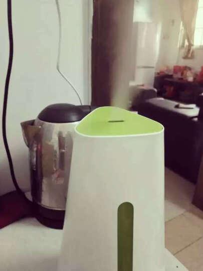 奔腾(POVOS)加湿器 1.5L容量 小三角  静音迷你办公室卧室客厅家用加湿 PW119 清新绿色 晒单图