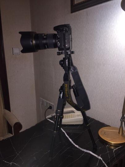 轻装时代迷你三脚架轻便携短小相机桌面微距三角架佳能微单反摄影手机直播自拍杆支架 Q166C麟纹碳纤【无自拍杆】 晒单图