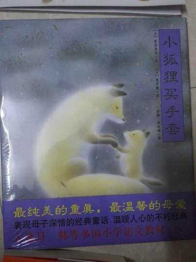 爱心树绘本:小狐狸买手套[3-6岁] 晒单图