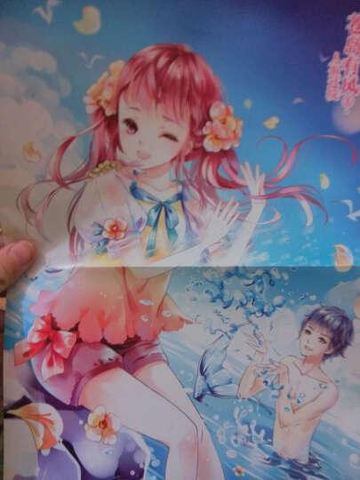 小小姐萌灵小说系列 11 苍岛有风·1 人鱼过境(升级版) 晒单图