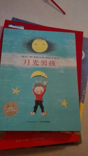 海豚绘本花园 月光男孩 平装 满怀童心 趣味轻松 儿童绘本图画故事童书儿童书籍3-6岁 晒单图