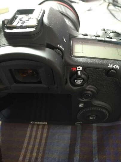 佳能(Canon) EOS 5D Mark III 单反机身 晒单图