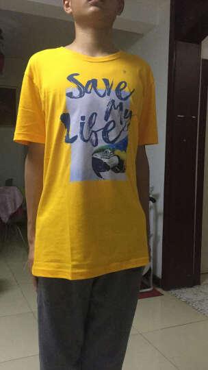 【售罄】Baleno/班尼路 夏季动物印花T恤男 纯棉休闲潮流半袖体恤男装 35Y橘黄色 XL 晒单图