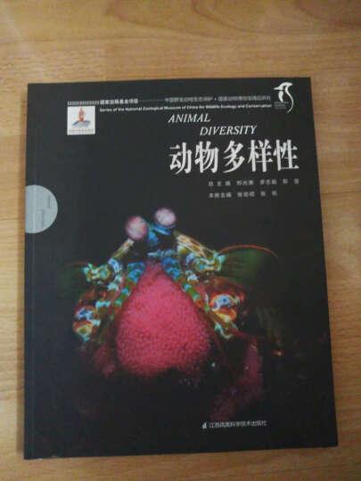 动物多样性/中国野生动物生态保护 国家动物博物馆精品研究 晒单图