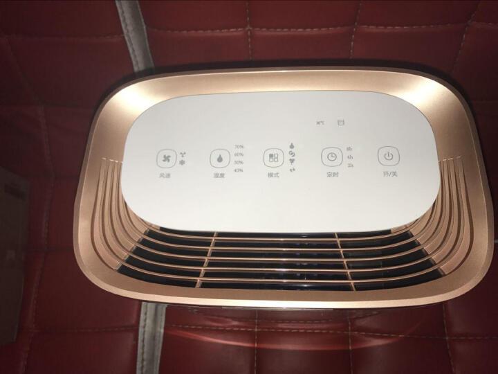 TCL 除湿机/抽湿机/除湿器家用 智能静音办公 地下室 净化干衣 升级款16E 晒单图