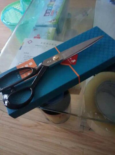 张小泉9寸锰钢复合服装剪刀 裁缝剪刀PC-9 晒单图