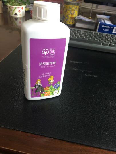 花童 植物营养液浓缩液体肥观花型 盆栽花卉园艺花肥料 260ml/瓶 晒单图