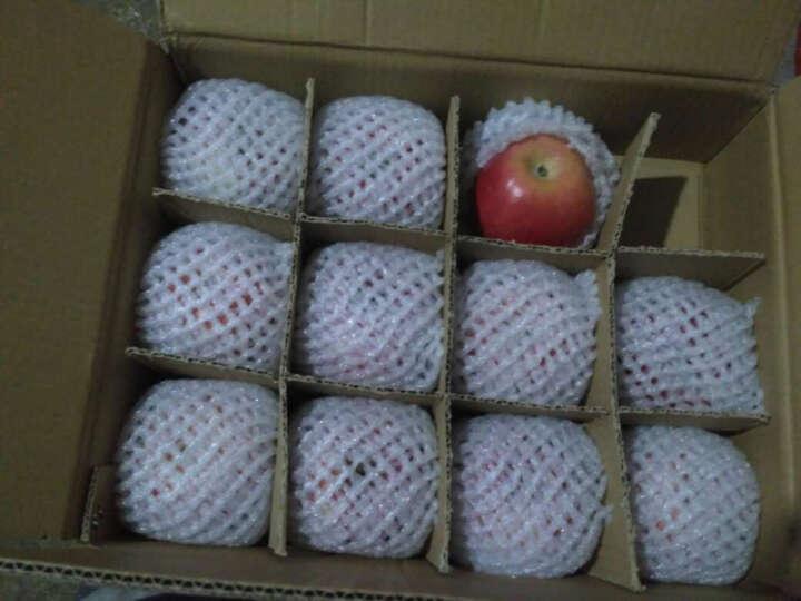 【顺丰速运】静宁红富士 甘肃苹果30枚80大果苹果水果礼盒年货送礼单果240g-280g 晒单图