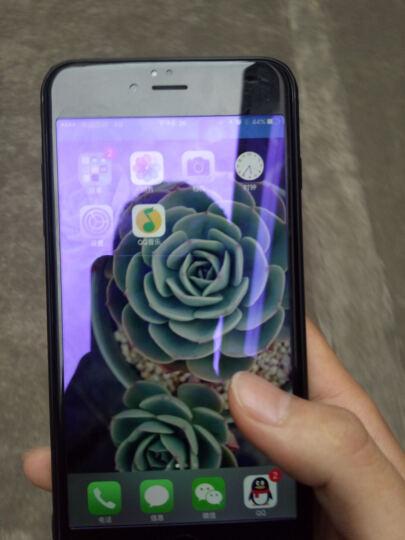 图拉斯 苹果se/8/7/6钢化膜iphone se2/8plus/7p全屏覆盖抗蓝光防爆玻璃手机膜 6P/6sPlus【白色】高清款 晒单图