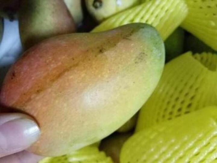 唐果食光 海南澳芒 2.5kg 新鲜芒果 生鲜水果 礼盒 晒单图