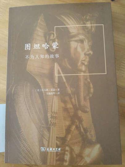 外国考古纪实丛书·图坦哈蒙:不为人知的故事 晒单图