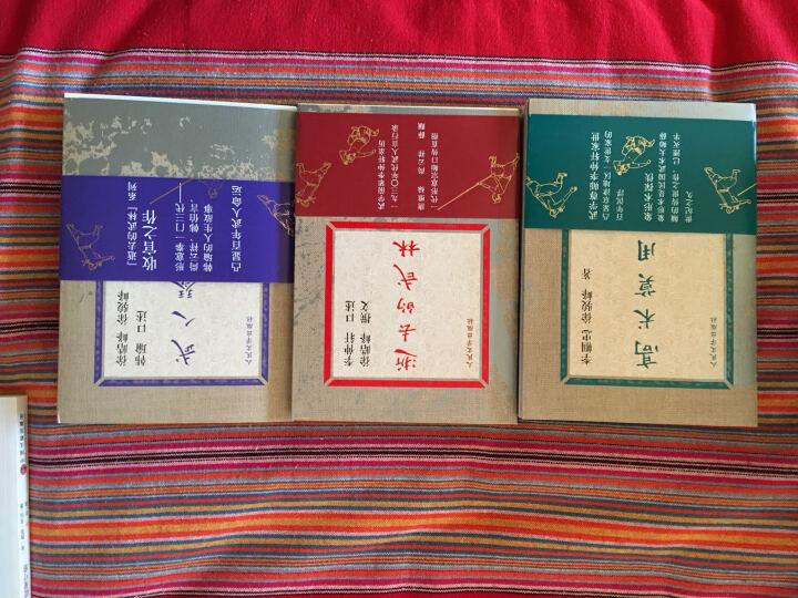 逝去的武林:徐皓峰口述武林(逝去的武林、高术莫用、武人琴音 套装共3册) 晒单图