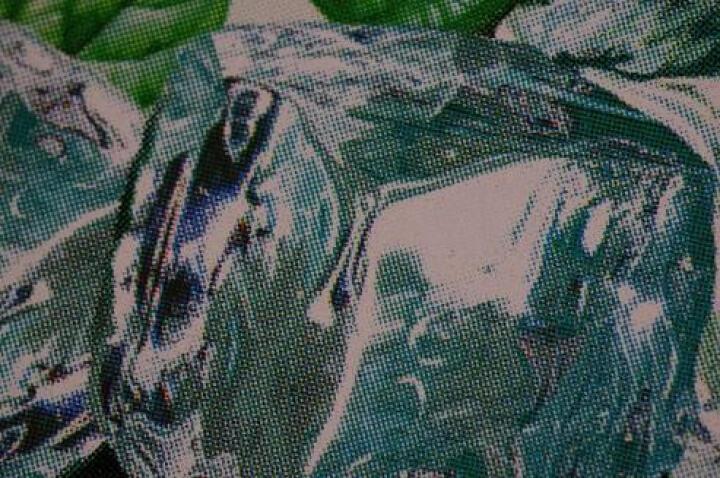 老蛙(LAOWA)CF 60mmF2.8 2:1倍超微距镜头(宾得镜头卡口) 晒单图