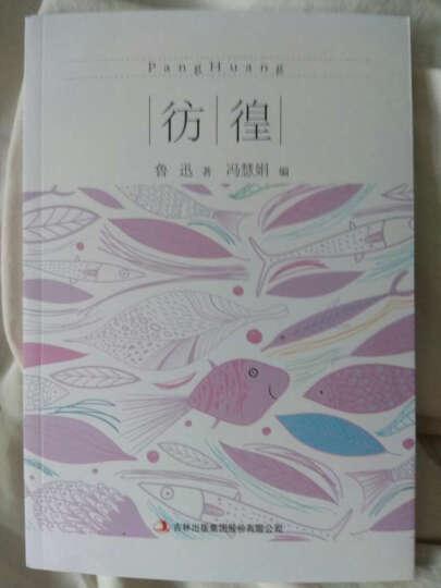 正版现货 全民阅读经典小丛书--彷徨 中国的社会问题 批判封建制度 鲁迅 畅销书籍 晒单图