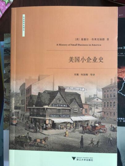 美国小企业史(社会经济史丛书系列) 晒单图