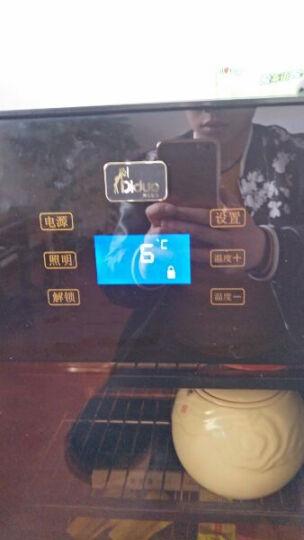 蒂朵(Diduo) BXW-308电冰箱办公室家用小型透明玻璃单门母乳客厅卧室冰吧茶叶零度冷藏保鲜柜 晒单图