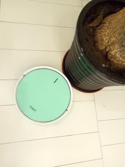 福玛特(FMART) 蓝晶灵(YZ-WB1) 智能扫地机器人家用吸尘器全自动拖地机清洁机 天蓝色 晒单图