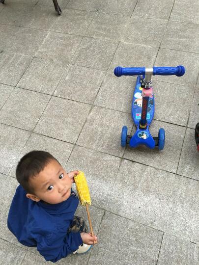 迪士尼滑板车儿童 可调节摇摆车 四轮全闪光加大PU轮可折叠 滑板车 88102米妮 晒单图