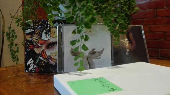 曾檐:一(CD) 晒单图