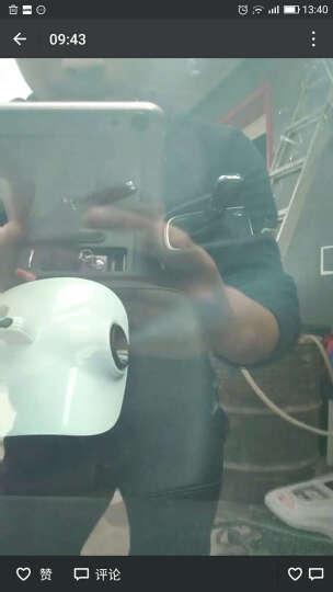 戴曼德汽车雾化消毒机烟雾机去味消毒机净化空气杀菌臭氧机消毒药水 定时雾化机+10瓶消毒药水 晒单图