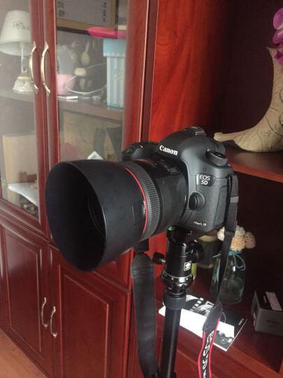 佳能(Canon) EF 85mm f/1.2L II USM 专业全画幅单反相机定焦镜头 晒单图