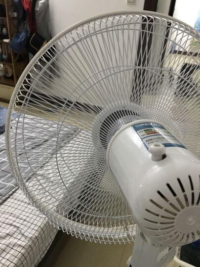华宝FS40-J7/H7家用电风扇/落地扇/落地风扇 遥控/机械学生宿舍静音台式电风扇特价 机械型 晒单图