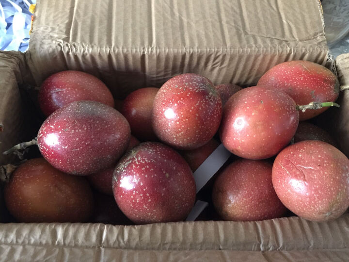 满天星百香果西番莲新鲜水果 1500g 晒单图