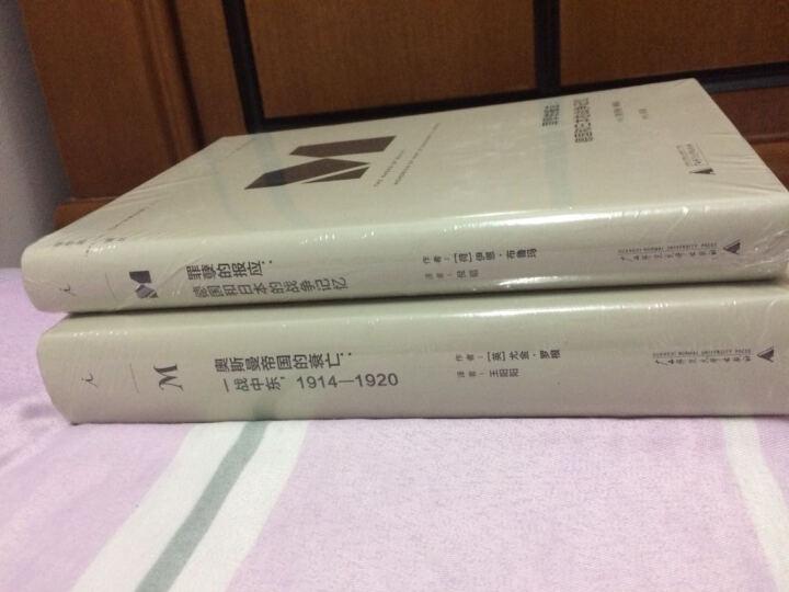 罪孽的报应:德国和日本的战争记忆(理想国译丛012) 晒单图