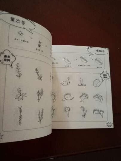 现货 超可爱简笔画5000例 一学就会幼儿童 简笔画大全书籍 教材书 儿童图书3-10岁 晒单图