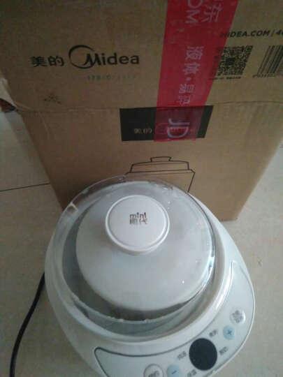 美的(Midea)电炖锅 电炖盅 煲汤锅 隔水炖 白瓷内胆 1L WBZS101XL-G 晒单图