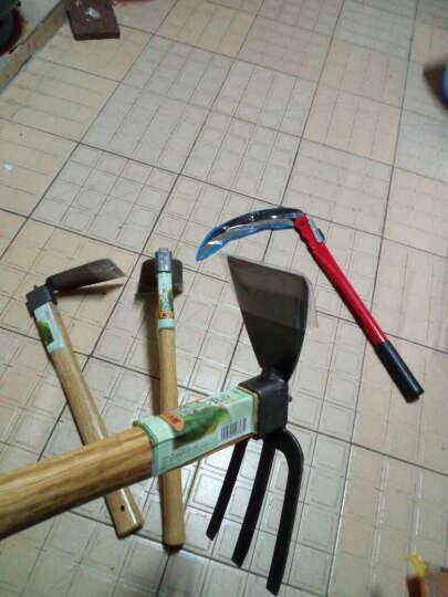 吉瑞源(JIRUIYUAN) 不锈钢锄头 木柄宽锄刨土挖土松土铲花园阳台种植工具园艺工具 两用三齿耙 晒单图
