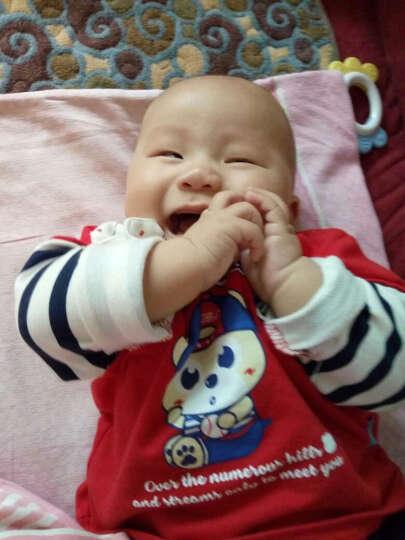 LAVLA儿童T恤男童T恤婴儿外出服 宝宝衣服针织纯棉上衣婴儿衣服 大红LH1B0110 73 晒单图