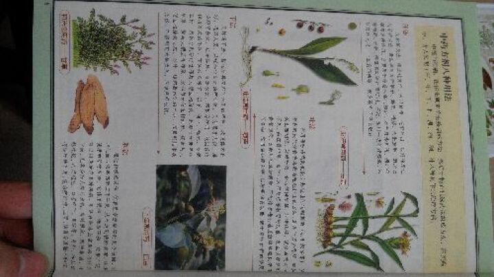 图解千金方:中国医学养生方剂大全(2012白话图解) 晒单图