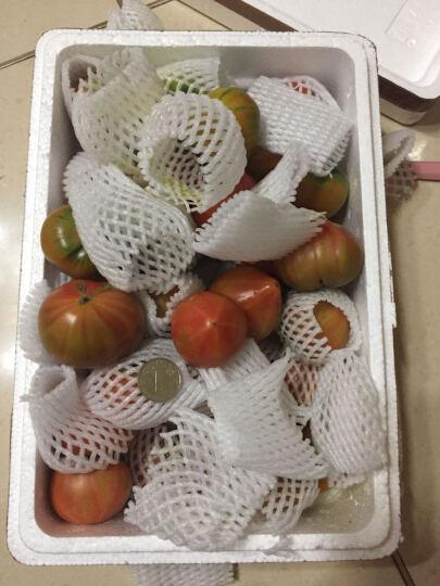 西红柿油柿子铁皮柿子绿腚草莓柿子番茄5斤丹东东港特产孕妇水果 5斤装 晒单图