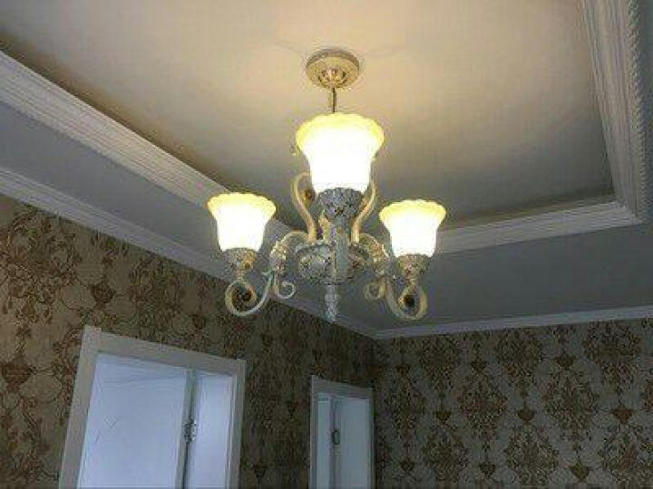 格雅诺 欧式吊灯 简约现代创意客厅餐厅卧室吊灯 简欧灯饰灯具0020 0020-8头朝上珍珠银 晒单图
