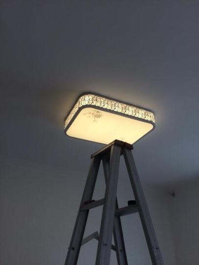 POG 圆形吸顶灯客厅led卧室简约现代客厅灯长方形创意卧室灯具大气 花瓣灯42*42CM三色温20W 晒单图