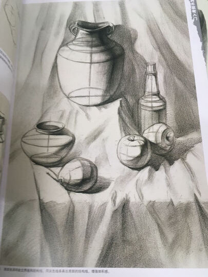 少年儿童美术培训专用教材系列丛书:素描组合静物写生教程(12岁-18岁) 晒单图