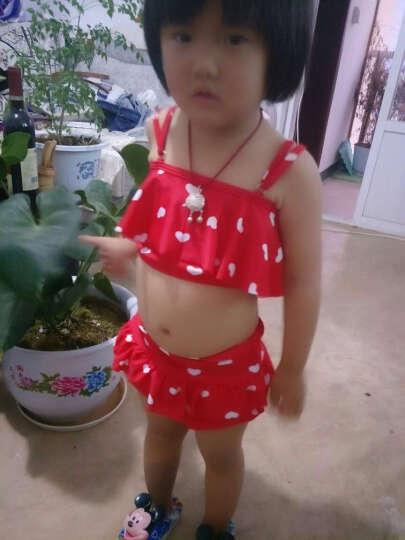 韩国儿童游泳衣女童女孩泳装公主比基尼宝宝分体裙式小中大童泳裤 藏青色 S(建议身高80-95) 晒单图