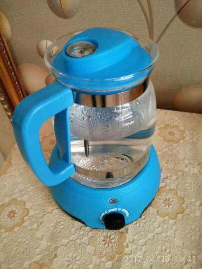 熊多多调奶器 多功能暖奶温奶恒温水壶 【上海发货 赠奶瓶刷】天蓝色 晒单图